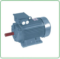 Thresher Electric Motor
